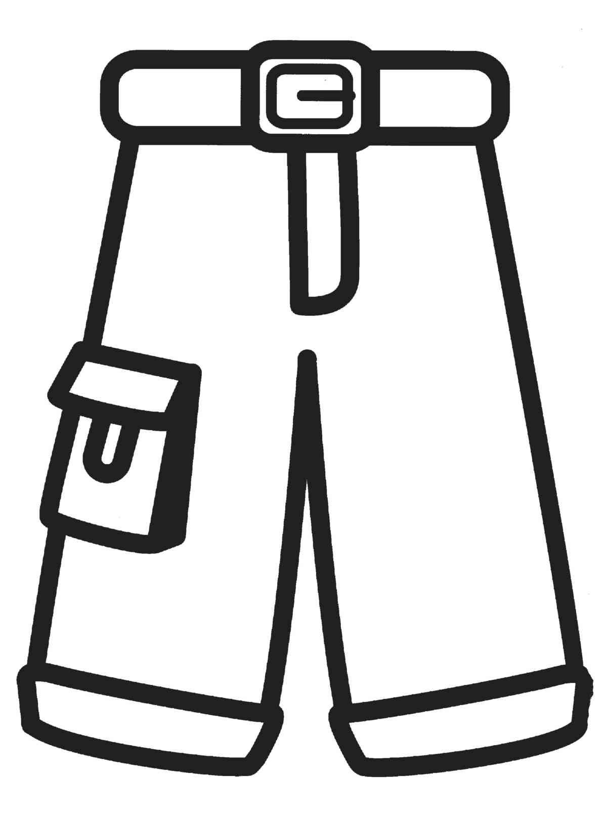 Раскраска штанов